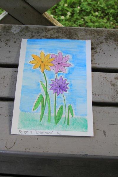 Kesän kukkia (Nea Palmqvist)
